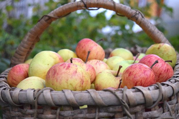 Lippsadt Culinaire und Apfelfest Bad Waldliesborn